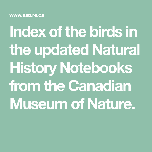 Photo of Index of the birds in the updated Natural History Notebooks from the Canadian Mu…