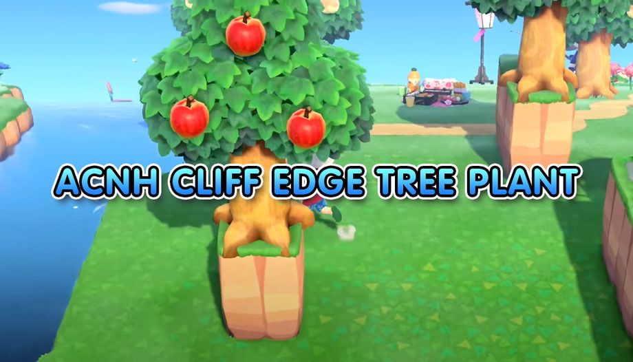 Acnh Cliff Edge Tree Glitch Plant Tree On Cliff Sides In Animal Crossing New Crossing Trees To Plant Cliff Edge Animal Crossing