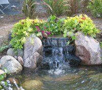 Anese Water Features For The Garden Design Ideas Koi Pond Pictures Home Decor Stunning Backyard