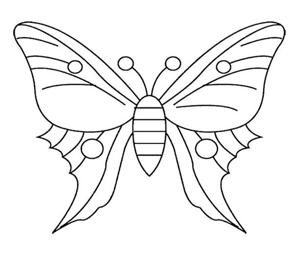 Butterfly Coloring Book For Sale Design