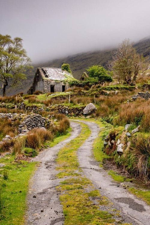 An almost abandoned cottage in #Ireland - so romantic.