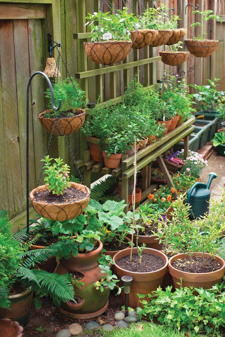 Container Gardening Made Easy You Can Grow Anything From - Small patio vegetable garden ideas