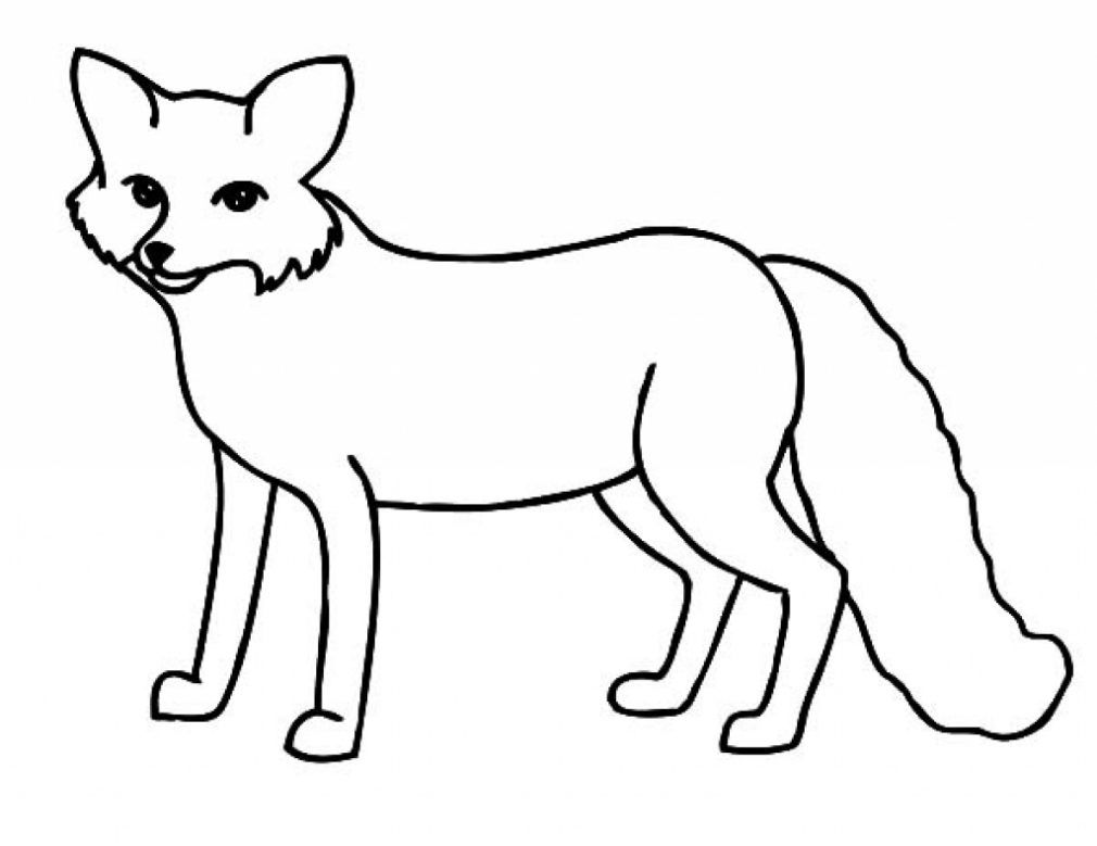 Printable Coloring Pages For Kids Coloringfolder Com Fox Coloring Page Animal Coloring Pages Cartoon Coloring Pages