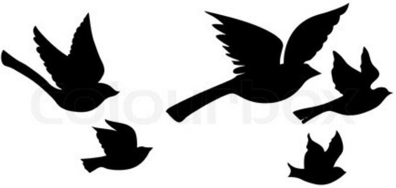 fly bird fly template birds birds bird silhouette silhouette