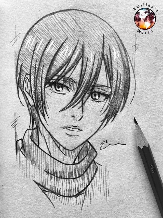 Photo of My drawing of Mikasa