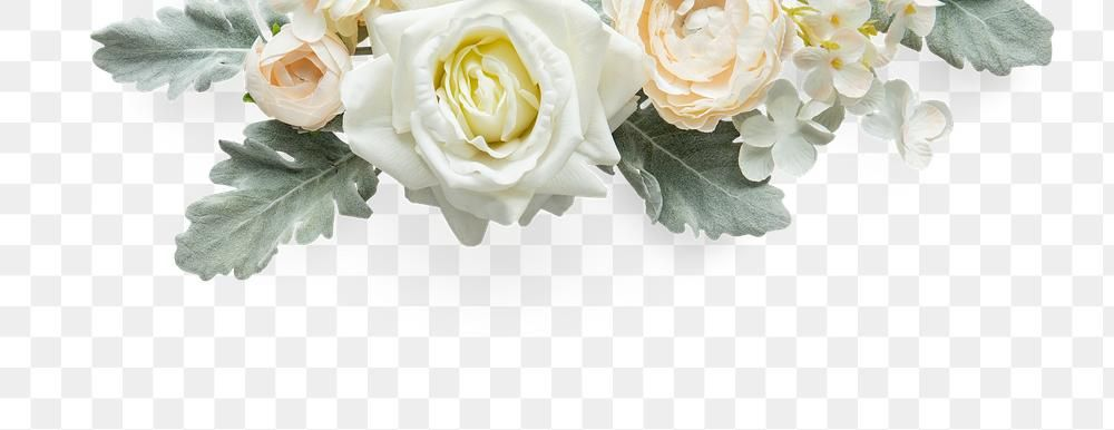 White Rose Flowers Design Element Free Image By Rawpixel Com Gade Flower Photos White Rose Png Rose Flower
