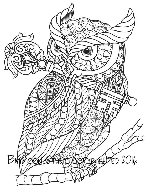 Owl With Key Adult Coloring Pages Animal Coloring Pages Owl