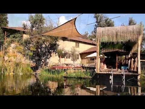 BioANTU, piscinas naturales y ecologicas Chile