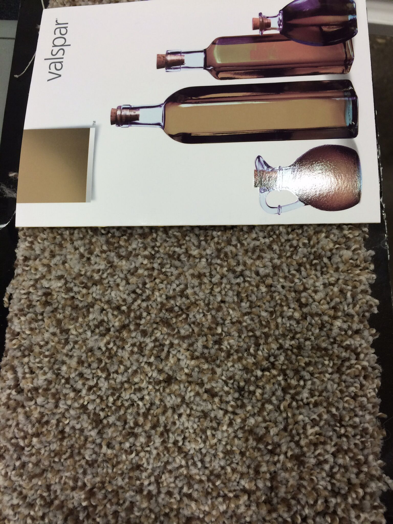 Carpet stainmaster pet protect for the whole house