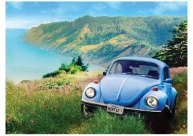 VW Beetle or Bug   Wir hatten eine weissen Käfer
