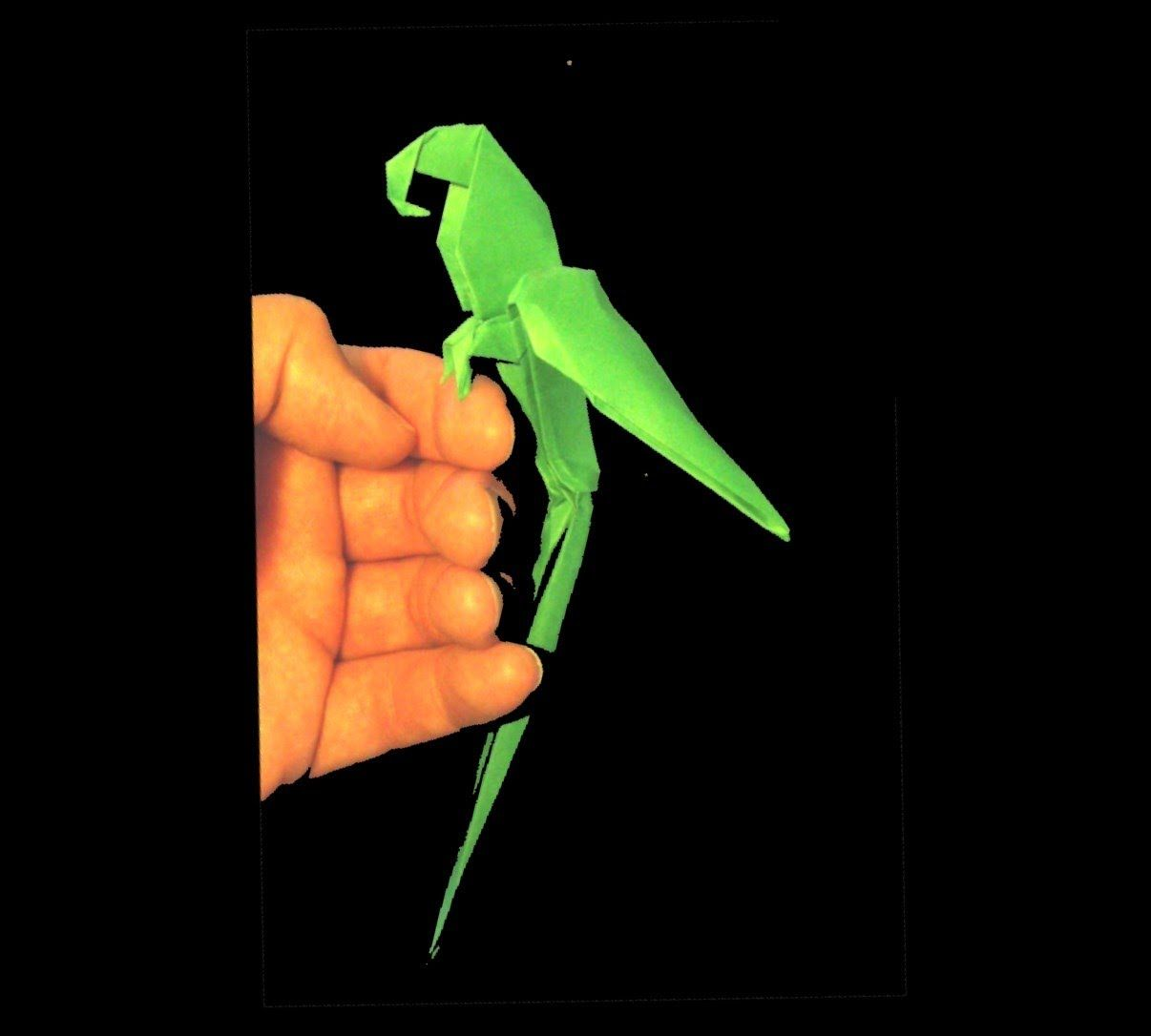 Origami Macaw Parrot Tutorial Manuel Sigro Pinterest Diagram Page 1