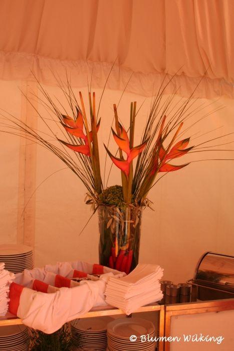 Blumen Wilking blumen wilking bielefeld eventdekoration blumen