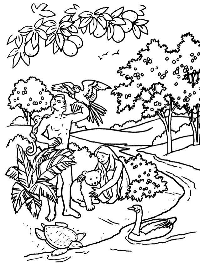 Dibujos Biblicos Para Colorear E Imprimir Buscar Con Google Adam And Eve Art Bible
