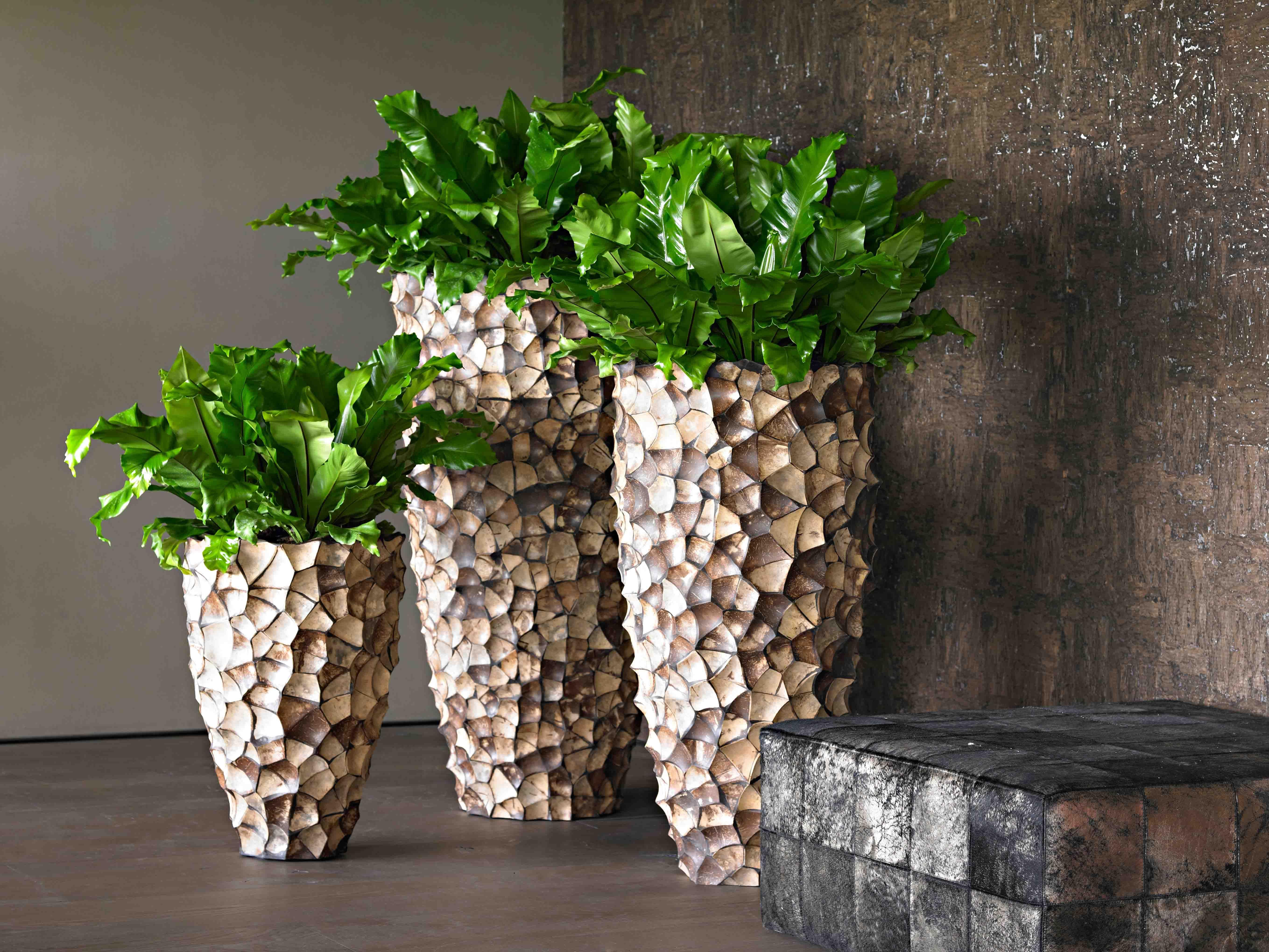 Luxeri se pflanzengef e natural interiors wohnzimmer for Zimmerpflanzen wohnzimmer