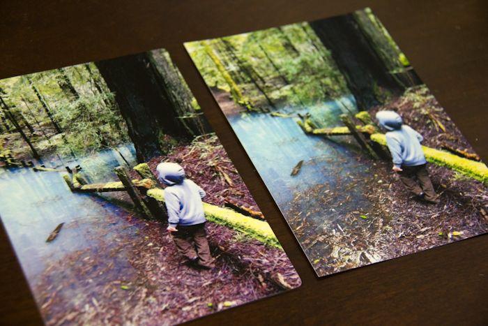 postal pix aluminum prints right from your phone aluminum print