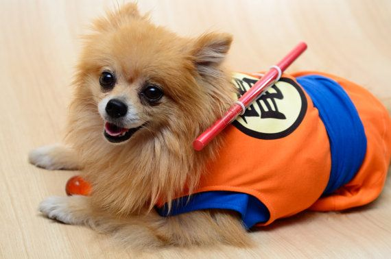 High Quality Costumes For Discerning Cosplay Pups   Dog ...