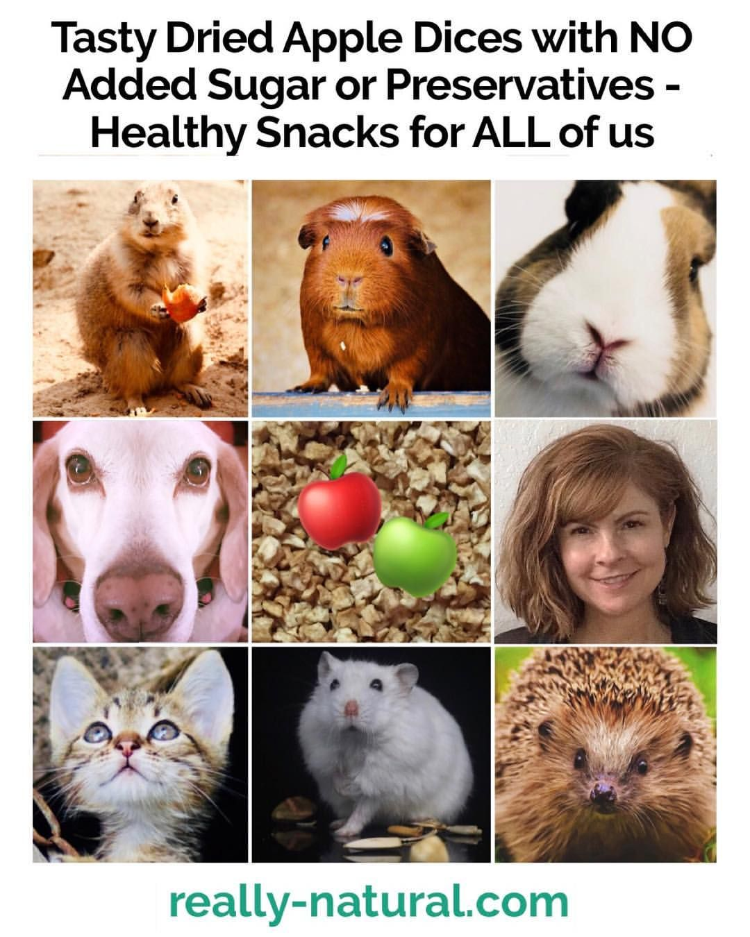 Delicious Healthy Apple Dices You Your Pets Can Share A Low Calorie Guilt Free Indulgence That Helps Us Feel Full Whi Your Pet Natural Pet Overweight Dog