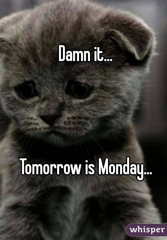 Funny Tomorrow Is Monday Meme : Tomorrow is monday week by pinterest funny stuff