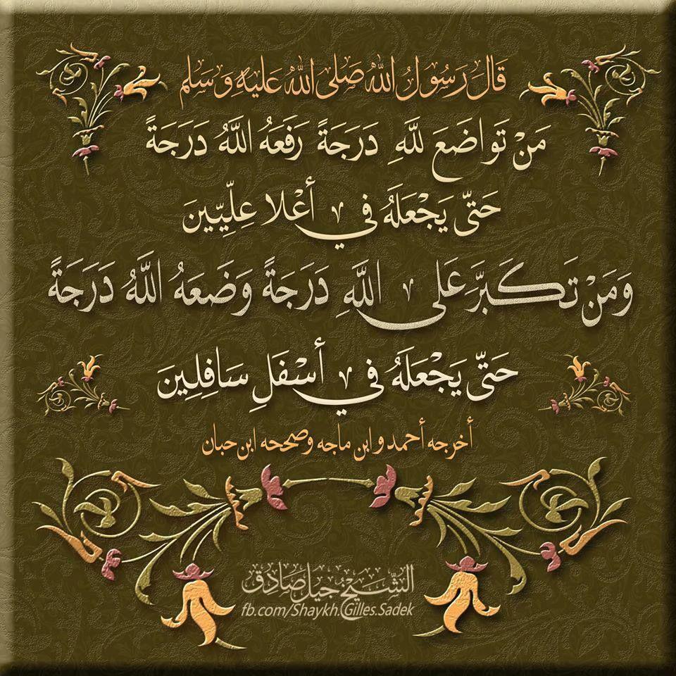 Shaykh Gilles Sadek Islam Arabic Calligraphy