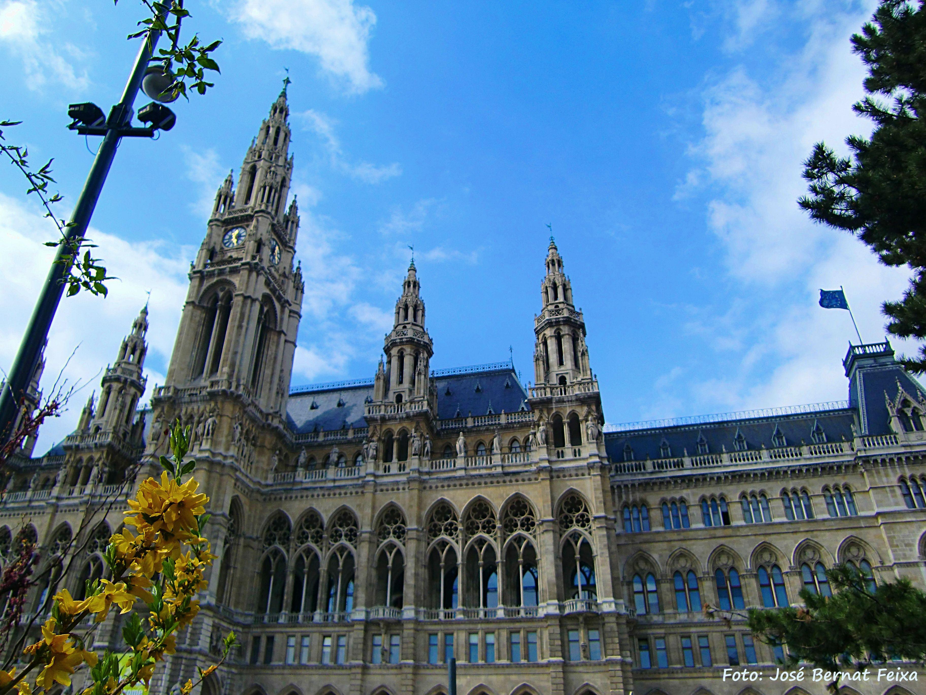 Rathaus, Wenen