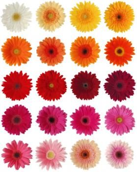 Gerbera Daisy Bridal Bouquets Daisy Bouquet Wedding Gerbera Daisy Colors Daisy Bridal Bouquet