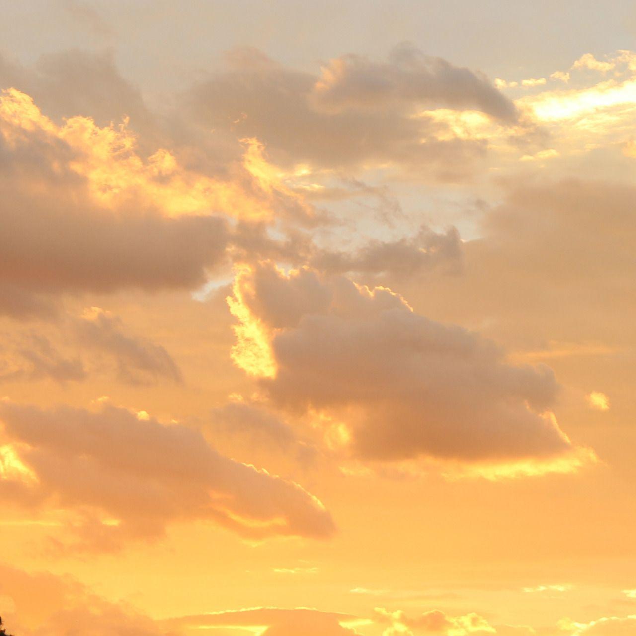 """finehoney:""""when the sky is liquid gold"""" on We Heart It"""