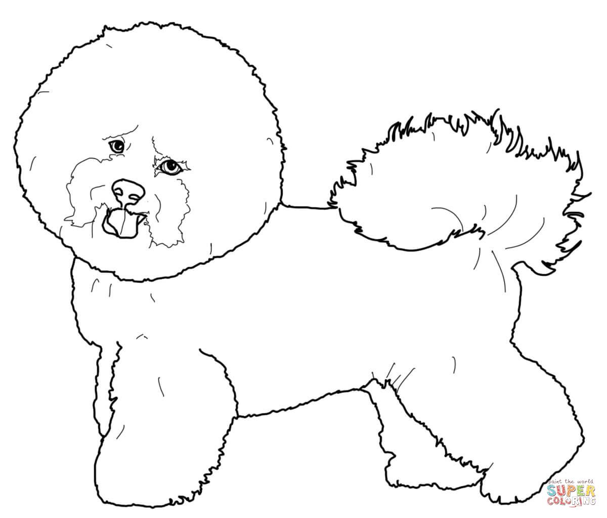 Bichon Frise Dog Coloring Page Puppy Coloring Pages Dog Coloring Book [ 1024 x 1200 Pixel ]