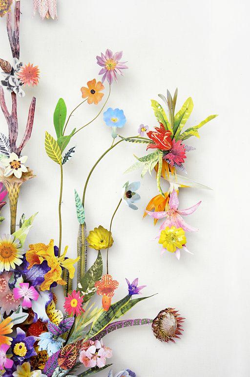 Anne Ten Donkelaar .. shadow boxed botanical flower collages