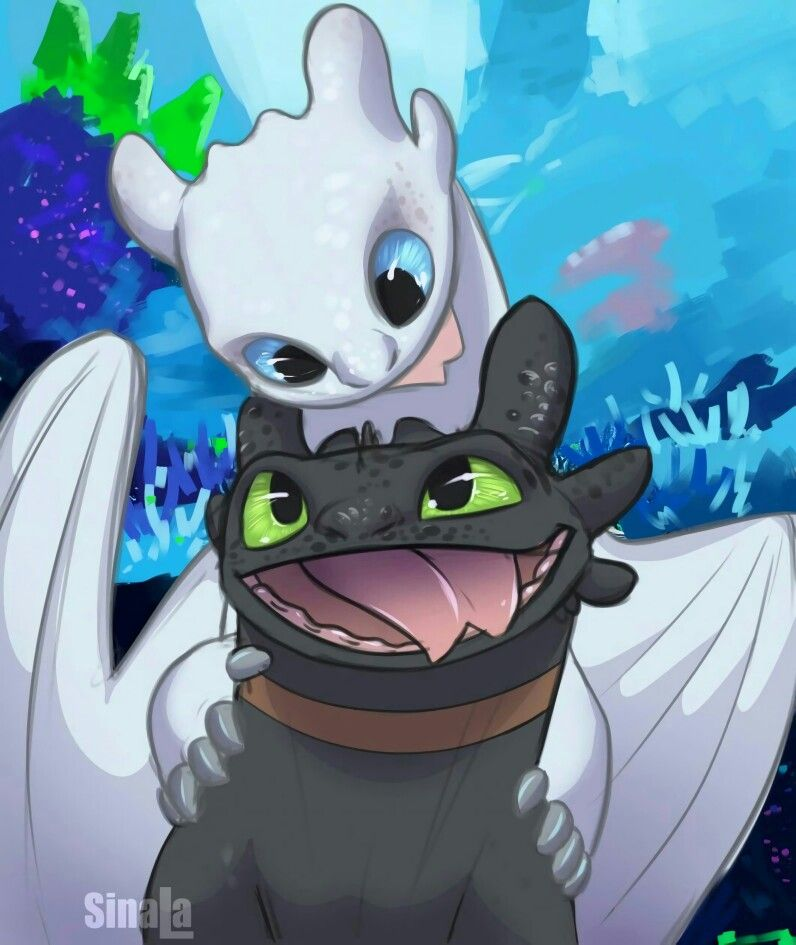 Toothless Wallpaper: Toothless And The Light Fury. :)
