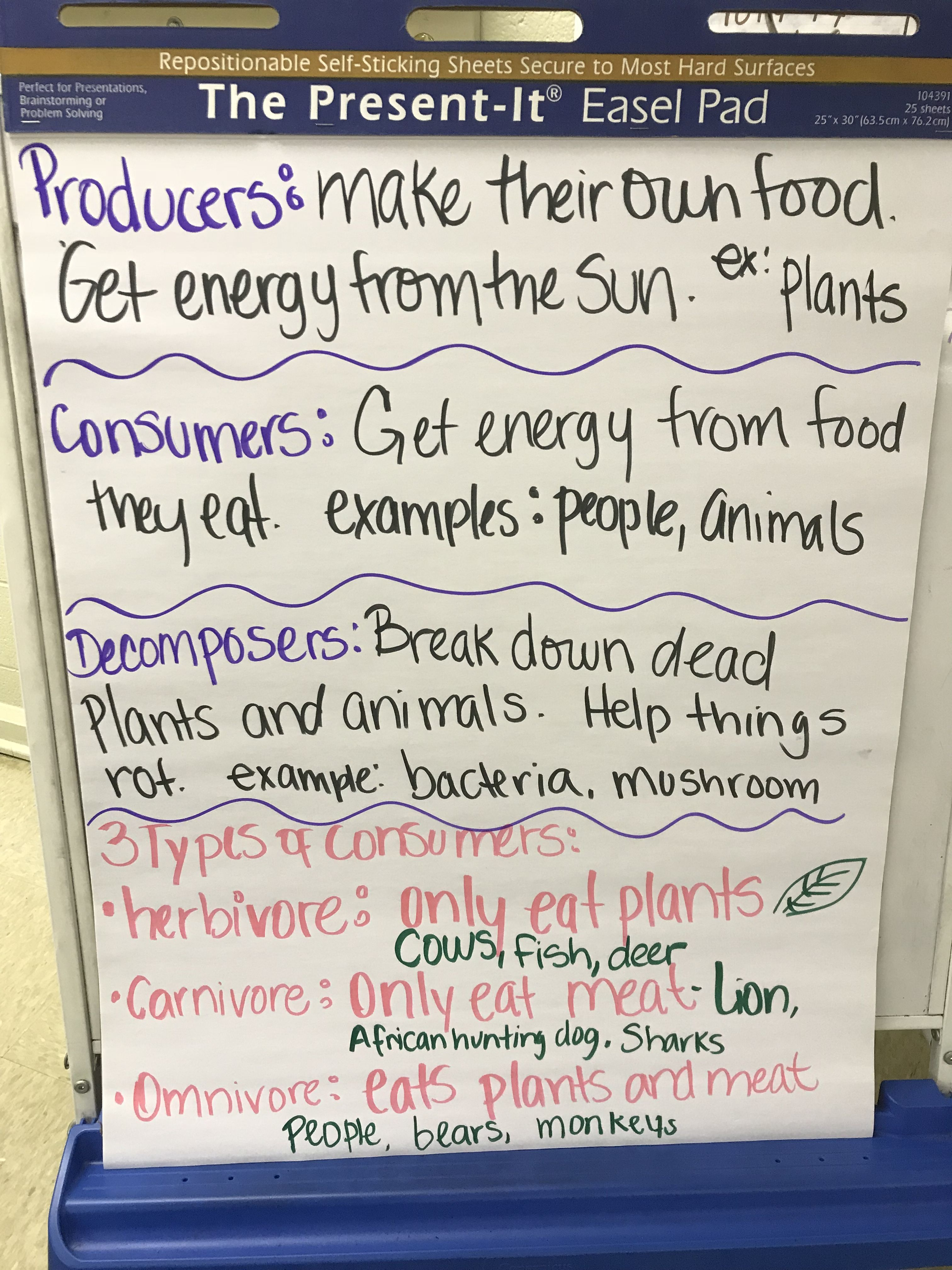3rd Grade Science Chart Producers Consumers And