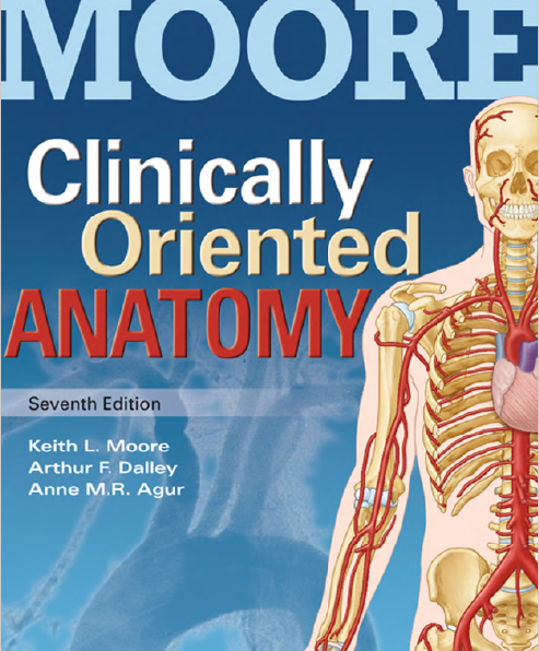 Download clinically oriented anatomy moore pdf | All Medical Books ...