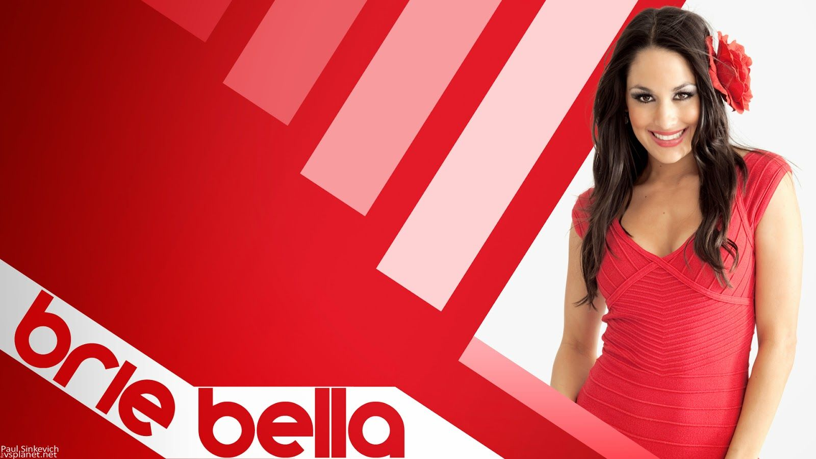 Brie Bella HD Images 1 | Brie Bella HD Images | Pinterest | Brie ...