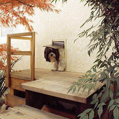 Dog Door to walkway?