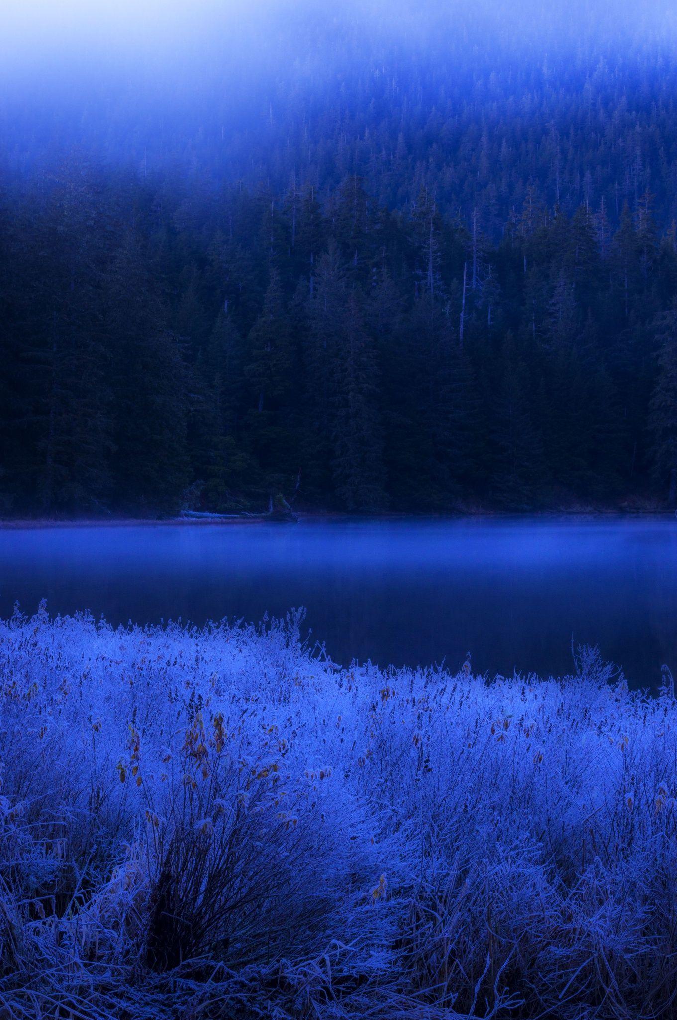 blue night fields- spell bind me to one spot