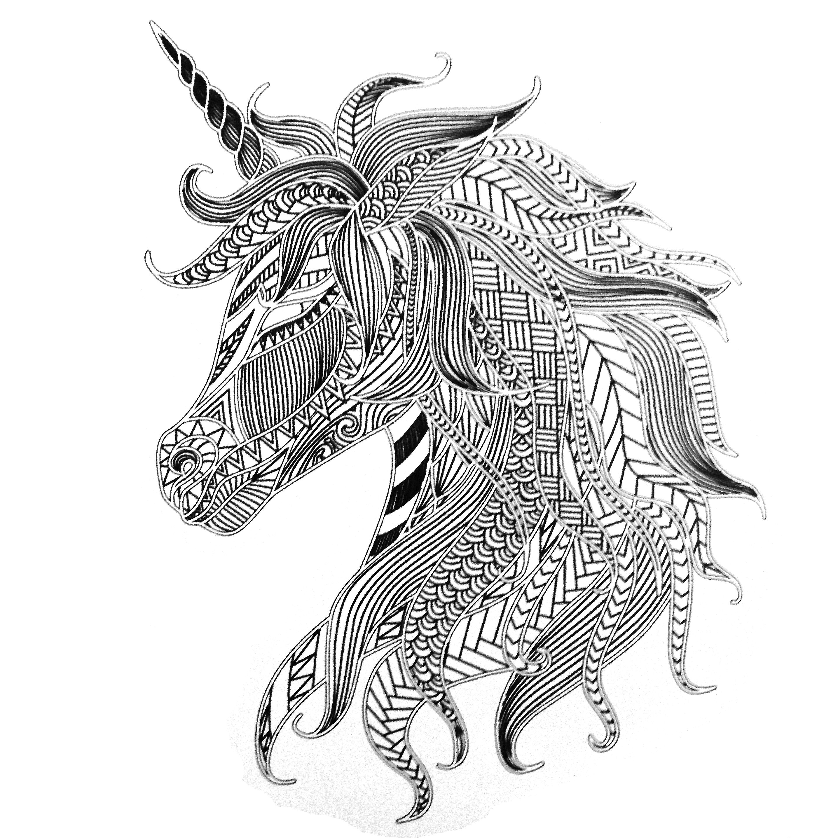 Colors of Nature Adult Colouring Book - Unicorn (With ...