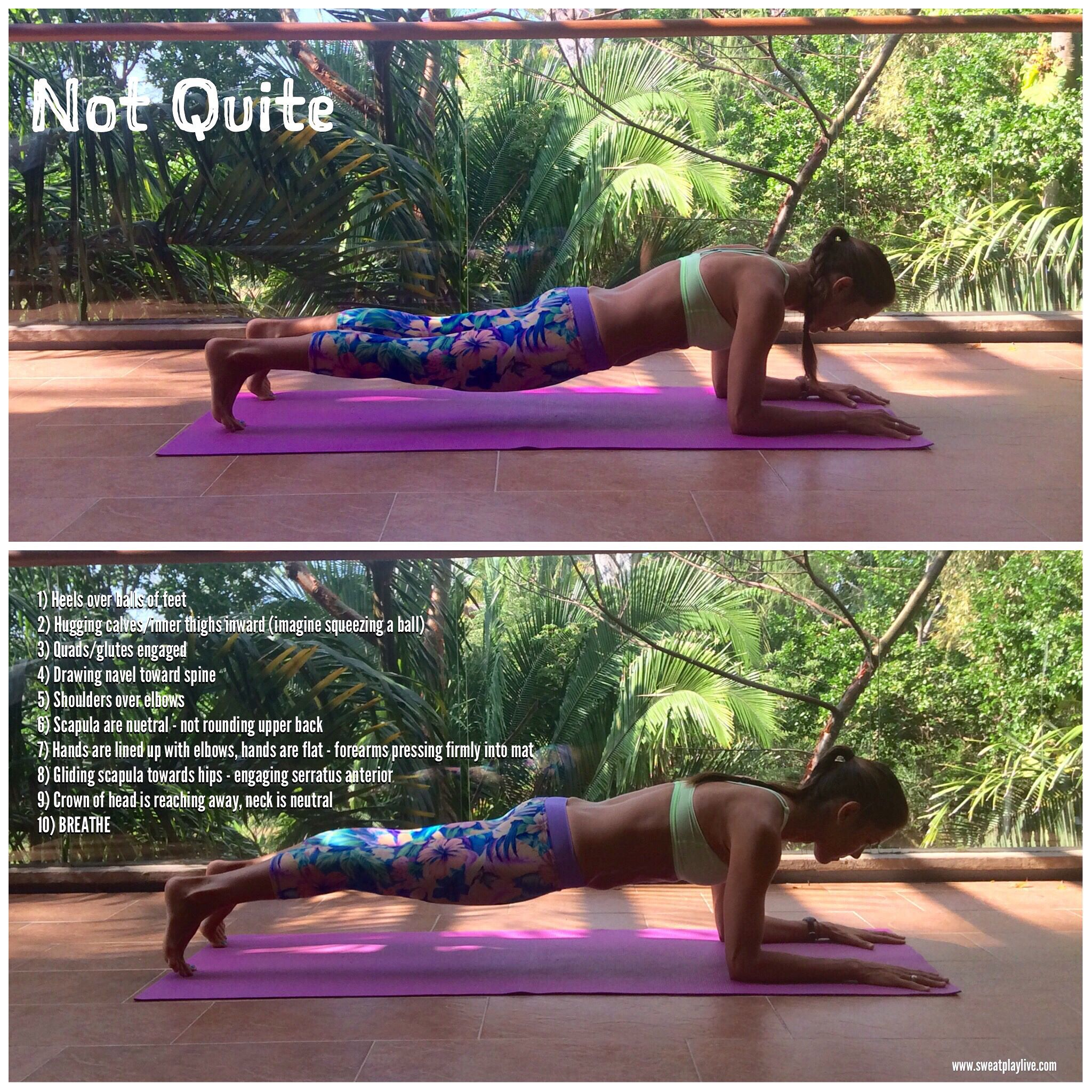 957c7f0ba5a Plank - The BEST exercise in the world... but only if you do it right! You  can modify by placing your knees on the ground - but keep everything else  the ...