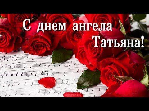 Хризантема кустовая Викинг / Каталог цветов / Flower
