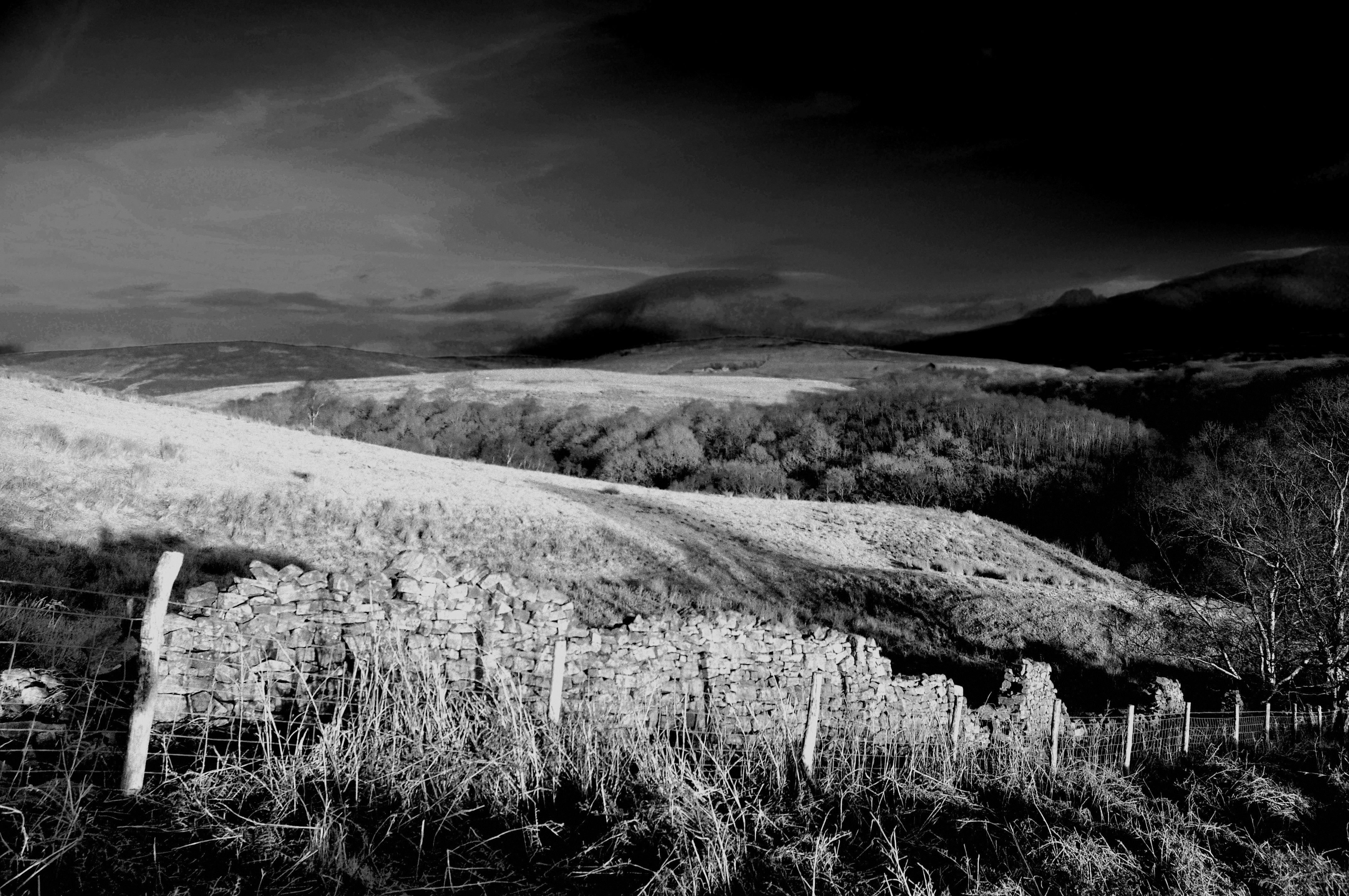 Bowland Fells, Lancashire, England.