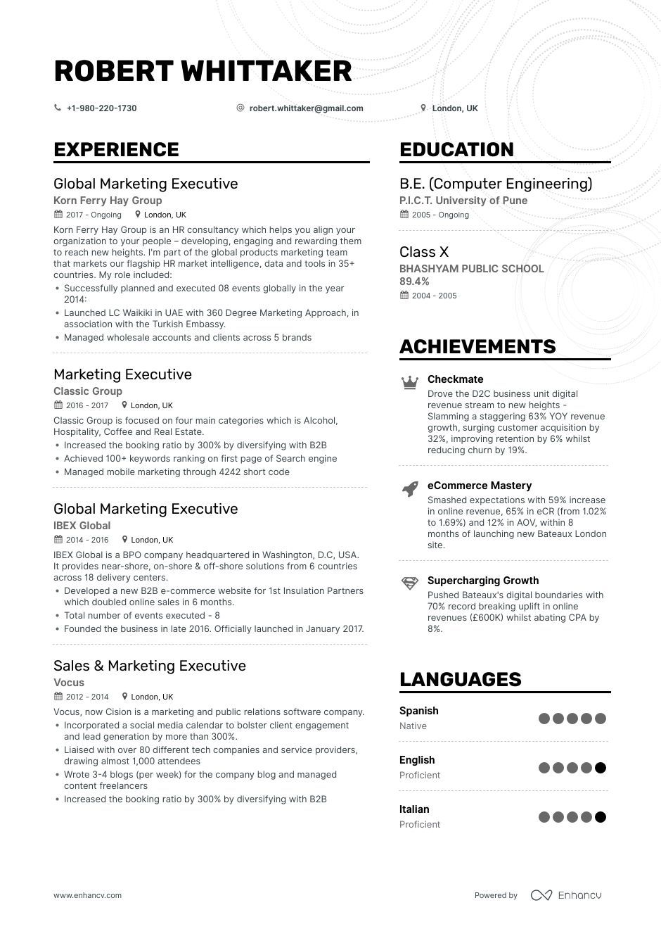 7+ Marketing Executive Resume Examples and Writing Guide