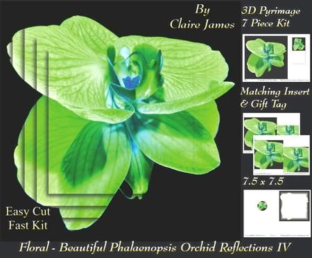 Floral Beautiful Phalaenopsis Orchid Reflections 4 Tag  on Craftsuprint - Add To Basket!