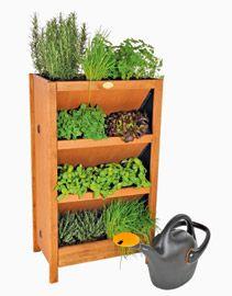Plantenrek kruidenmax