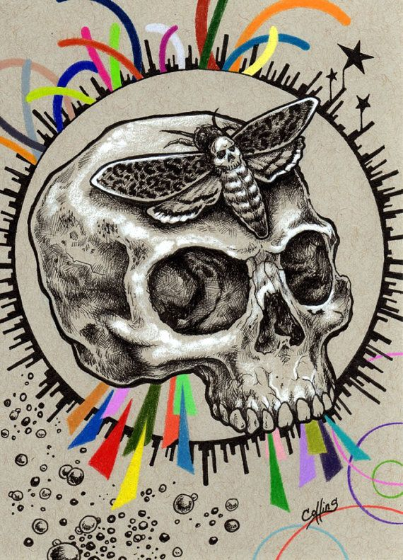 Skull and Deaths Head Hawk Moth ink drawing print by Bryan A. Collins ~ http://www.bryancollins.etsy.com