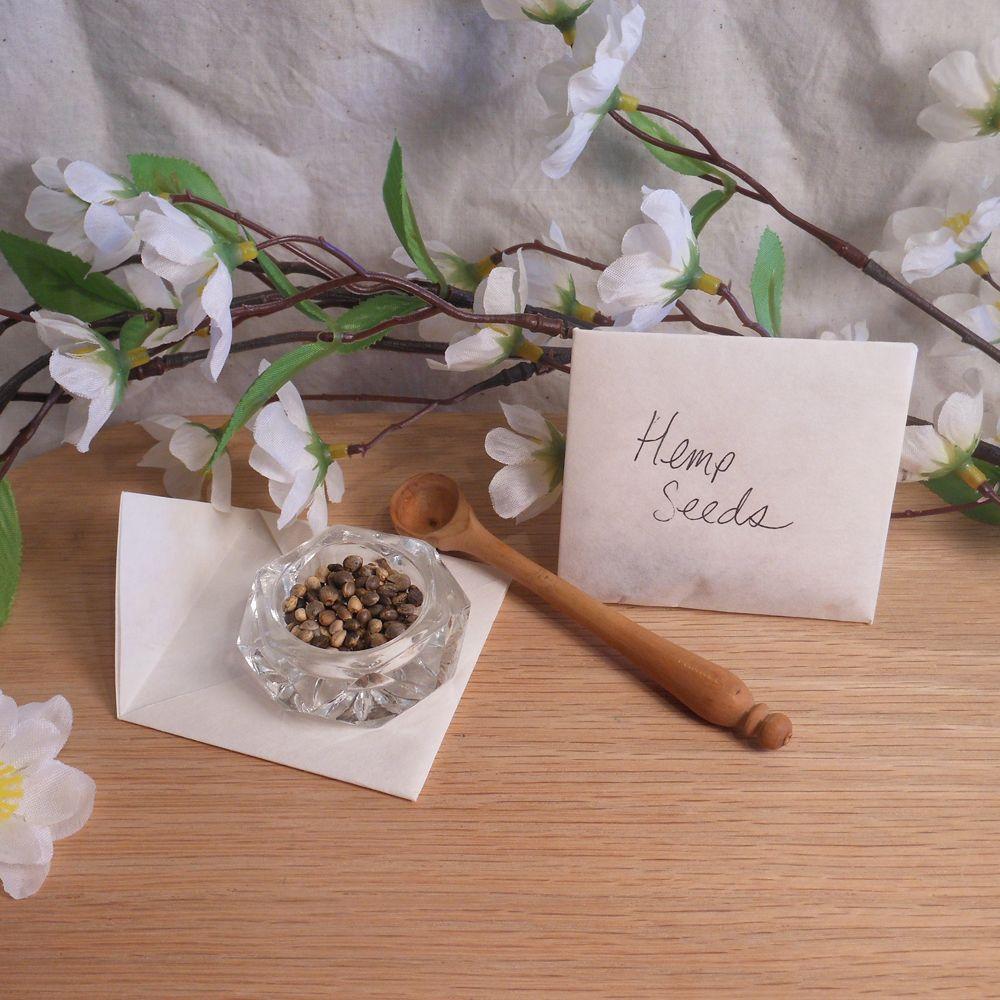 Hemp (Cannabis sativa) Seeds   Herbs for Spells and Rituals   BrianaDragon Creations
