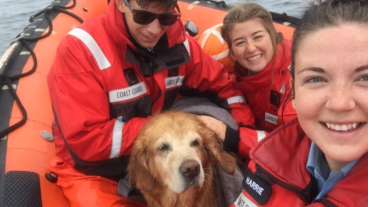 Best Rescue Ever Canadian Coast Guard Retrieves Golden Retriever