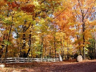 Secluded Romantic Cabins In Michigan Fall Vacations Romantic