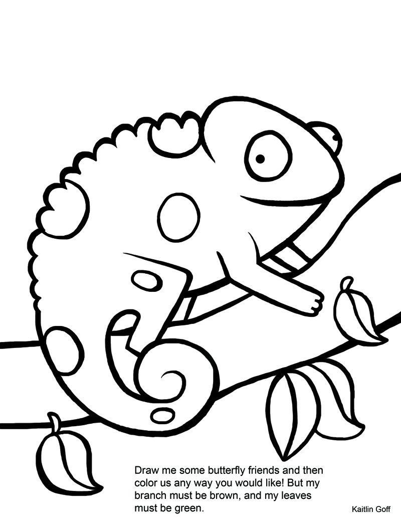 Chameleon Coloring Pages 1 Jpg 800 1035 Chameleon Color