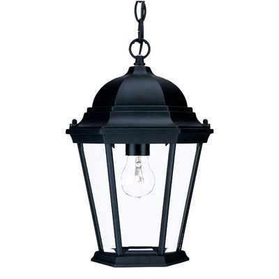 Acclaim Lighting Richmond 1 Light Outdoor Hanging Lantern Finish: Matte Black, Shade Type: Clear Beveled