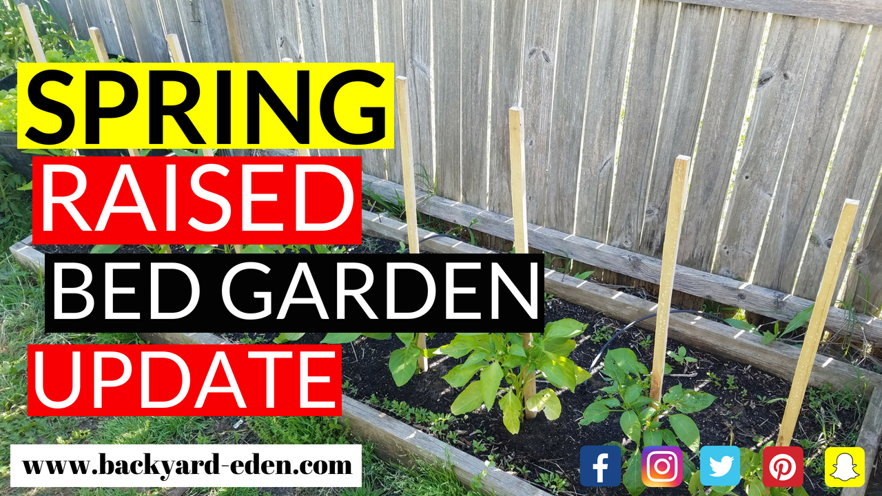 How to prepare a raised bed for planting How to prep a