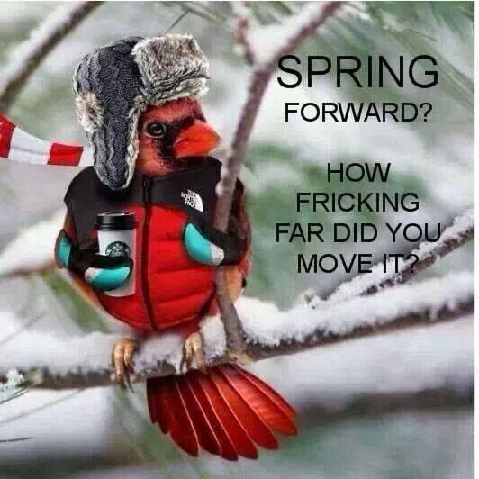 """""""Spring forward? How fricking far did you move it?"""""""