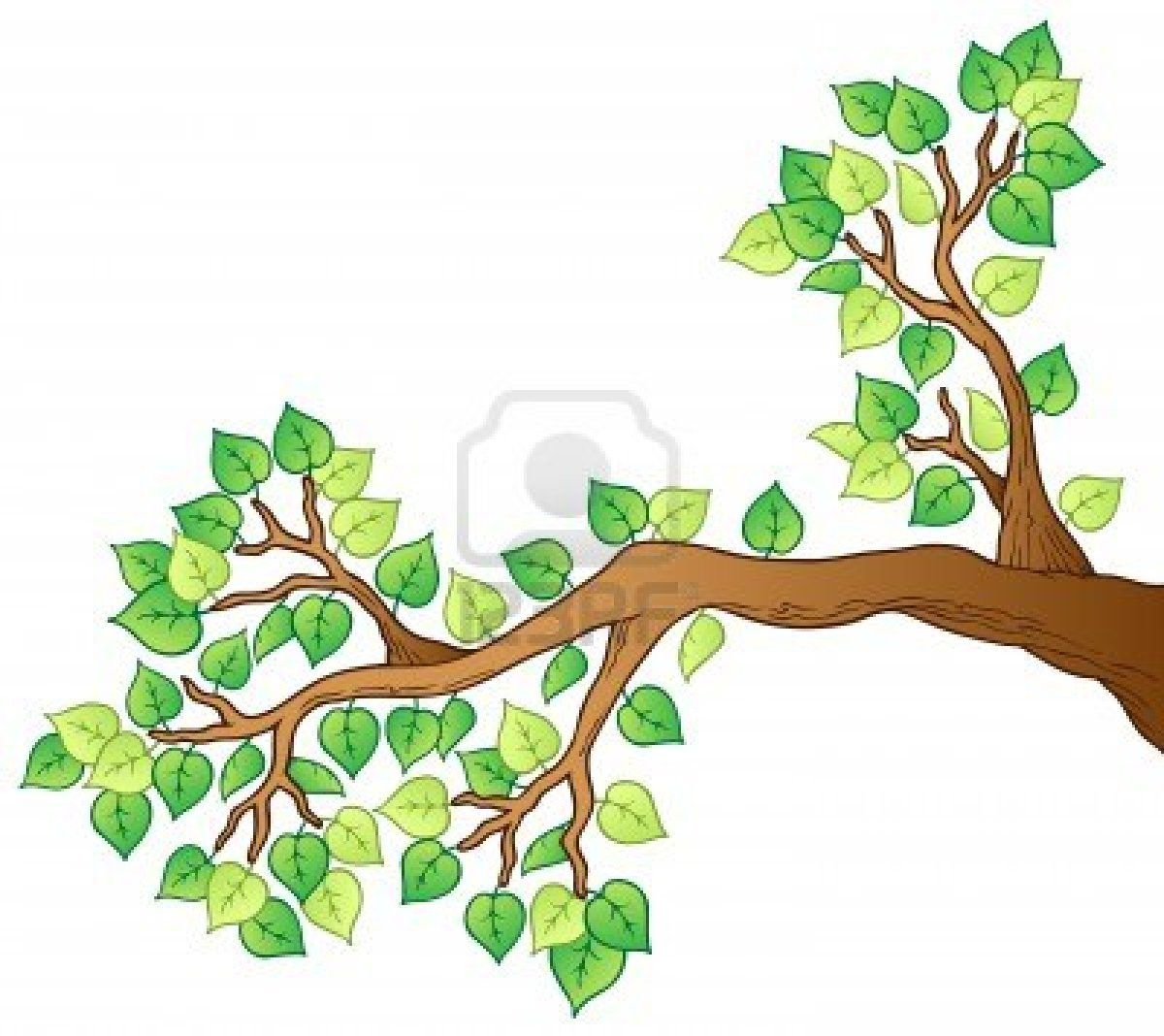How to draw a cartoon tree with branches images - Ramas de arboles ...